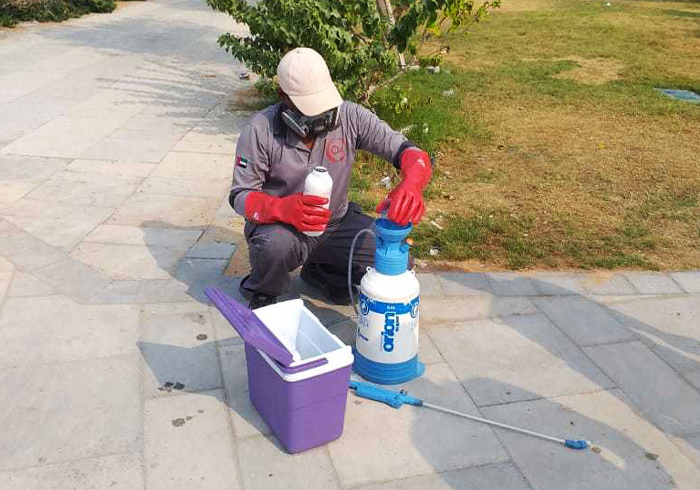 pest control Sharjah